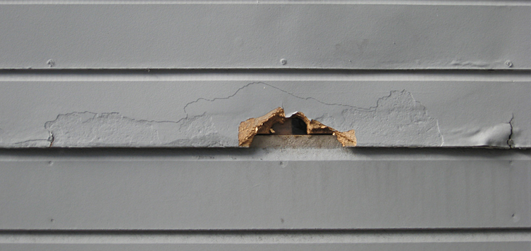 siding maintenance tips